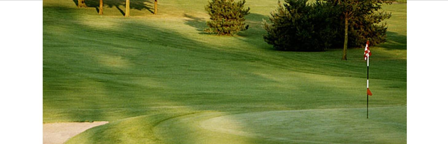 Annual Golf Outing - June 24th at 5pm